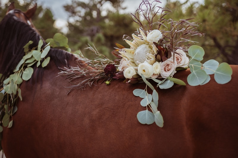 Denver Bridal Photography, bouquet resting on horse's back